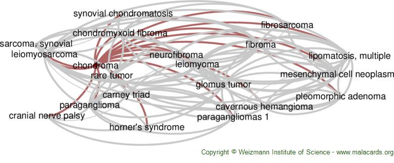 Diseases related to Chondroma