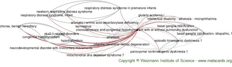 Diseases related to Choreoathetosis and Congenital Hypothyroidism with or Without Pulmonary Dysfunction