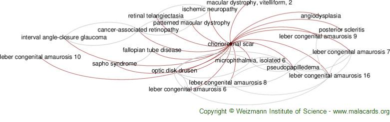Diseases related to Chorioretinal Scar