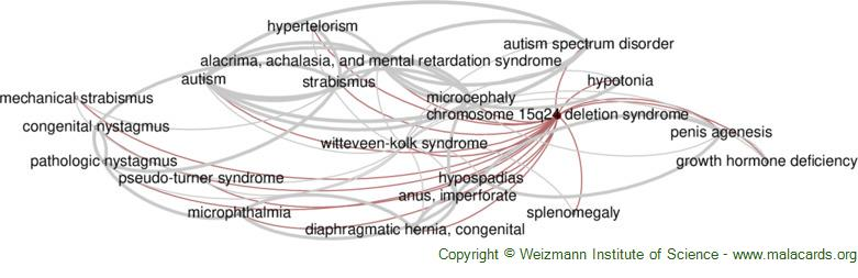 Diseases related to Chromosome 15q24 Deletion Syndrome