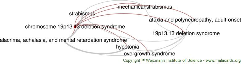 Diseases related to Chromosome 19p13.13 Deletion Syndrome