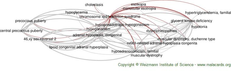 Diseases related to Chromosome Xp21 Deletion Syndrome