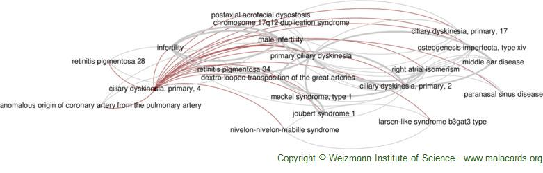 Diseases related to Ciliary Dyskinesia, Primary, 4