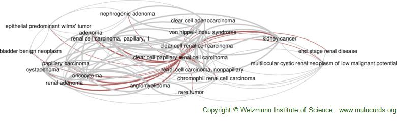 Diseases related to Clear Cell Papillary Renal Cell Carcinoma