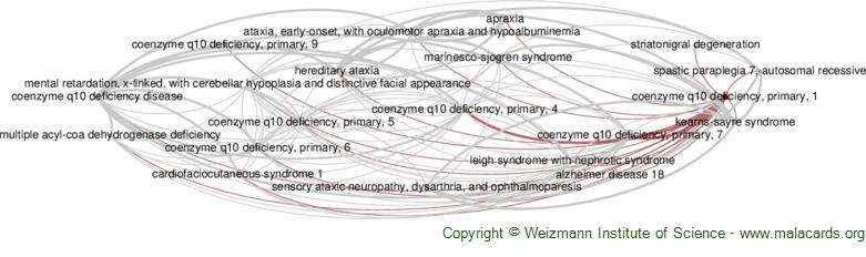 Diseases related to Coenzyme Q10 Deficiency, Primary, 1