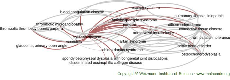Diseases related to Collagen Disease