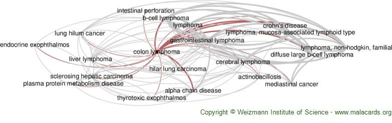 Diseases related to Colon Lymphoma