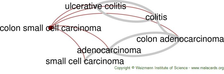 Diseases related to Colon Small Cell Carcinoma