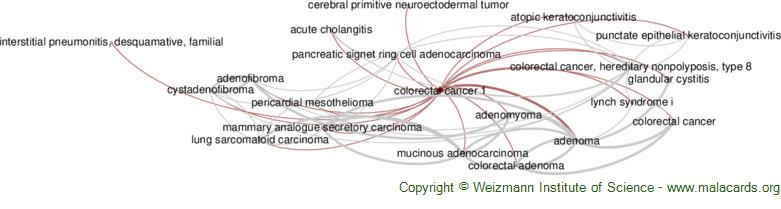 Diseases related to Colorectal Cancer 1