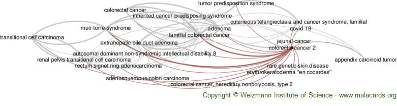Diseases related to Colorectal Cancer 2