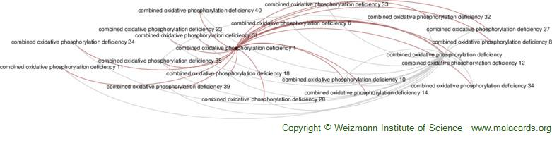 Diseases related to Combined Oxidative Phosphorylation Deficiency 1