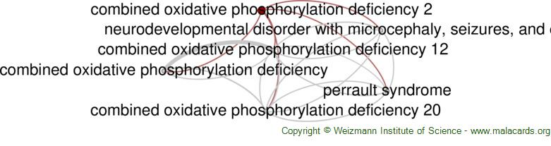 Diseases related to Combined Oxidative Phosphorylation Deficiency 2