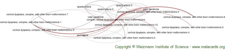 Diseases related to Complex Cortical Dysplasia with Other Brain Malformations
