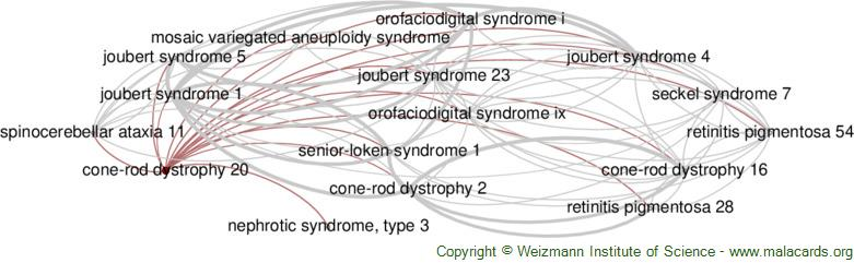 Diseases related to Cone-Rod Dystrophy 20