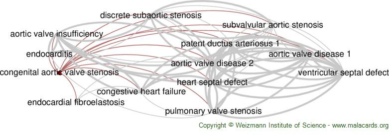 Diseases related to Congenital Aortic Valve Stenosis