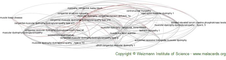 Diseases related to Congenital Muscular Dystrophy-Dystroglycanopathy Type A10
