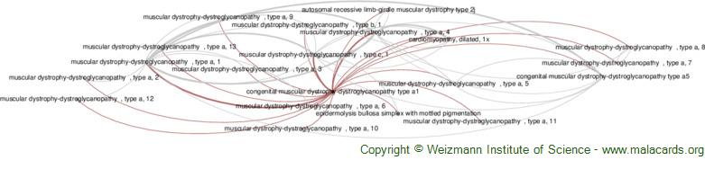 Diseases related to Congenital Muscular Dystrophy-Dystroglycanopathy Type A1