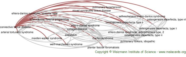 Diseases related to Connective Tissue Disease