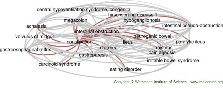 Diseases related to Constipation