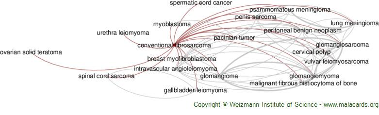 Diseases related to Conventional Fibrosarcoma
