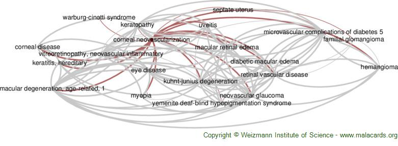 Diseases related to Corneal Neovascularization