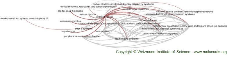 Diseases related to Cortical Blindness