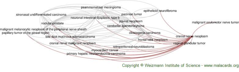 Diseases related to Cranial Nerve Neoplasm