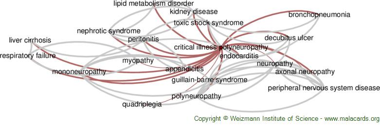 Diseases related to Critical Illness Polyneuropathy