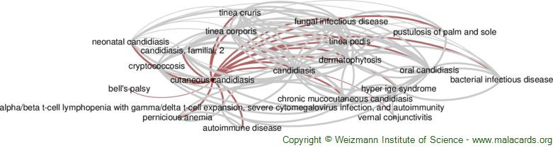 Diseases related to Cutaneous Candidiasis