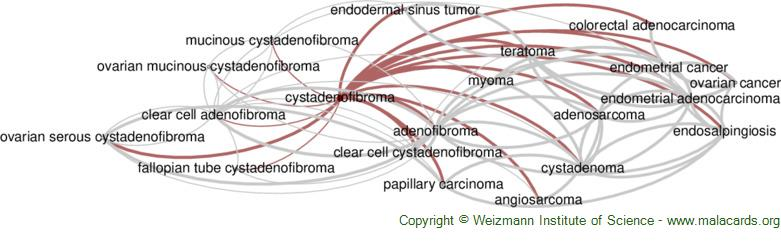 Diseases related to Cystadenofibroma
