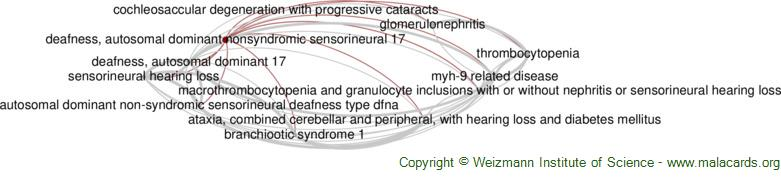 Diseases related to Deafness, Autosomal Dominant Nonsyndromic Sensorineural 17