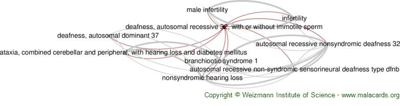 Diseases related to Deafness, Autosomal Recessive 32, with or Without Immotile Sperm
