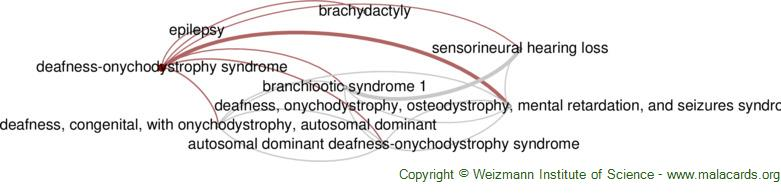 Diseases related to Deafness-Onychodystrophy Syndrome