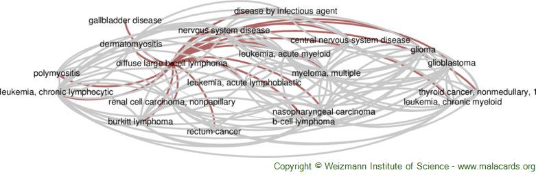Diseases related to Diffuse Large B-Cell Lymphoma