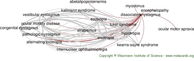 Diseases related to Dissociated Nystagmus