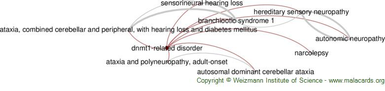 Diseases related to Dnmt1-Related Disorder