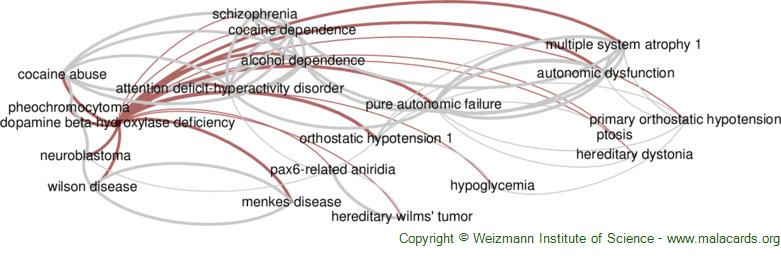 Diseases related to Dopamine Beta-Hydroxylase Deficiency