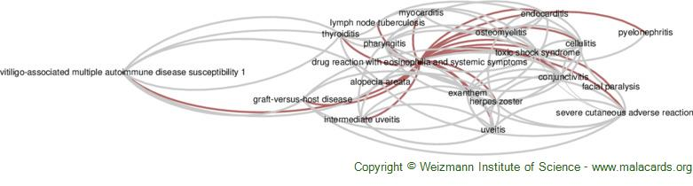 Diseases related to Drug Reaction with Eosinophilia and Systemic Symptoms