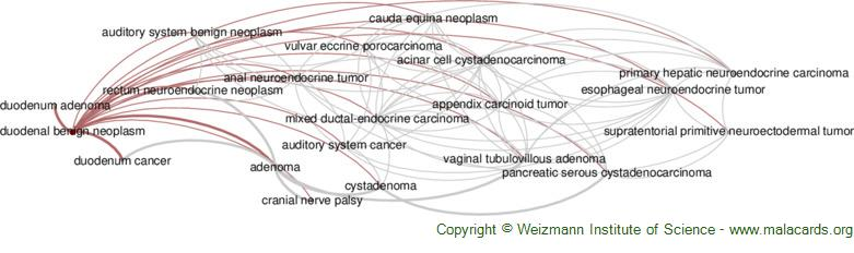 Diseases related to Duodenal Benign Neoplasm