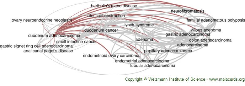 Diseases related to Duodenum Adenocarcinoma