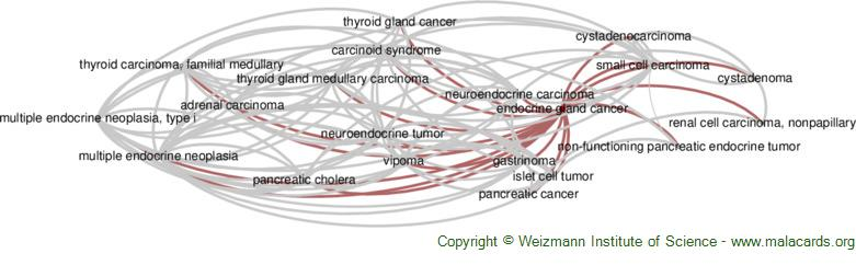 Diseases related to Endocrine Gland Cancer