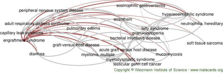 Diseases related to Engraftment Syndrome
