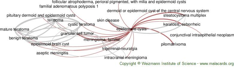 Diseases related to Epidermoid Cysts
