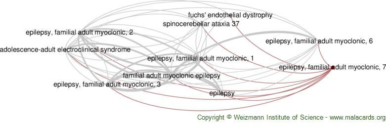Diseases related to Epilepsy, Familial Adult Myoclonic, 7
