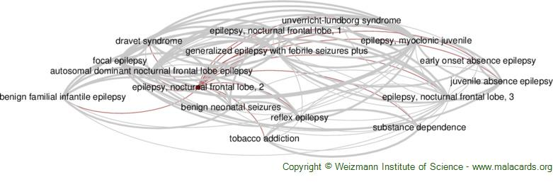 Diseases related to Epilepsy, Nocturnal Frontal Lobe, 2