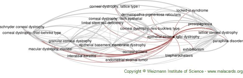 Diseases related to Epithelial-Stromal Tgfbi Dystrophy