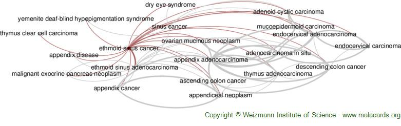 Diseases related to Ethmoid Sinus Cancer