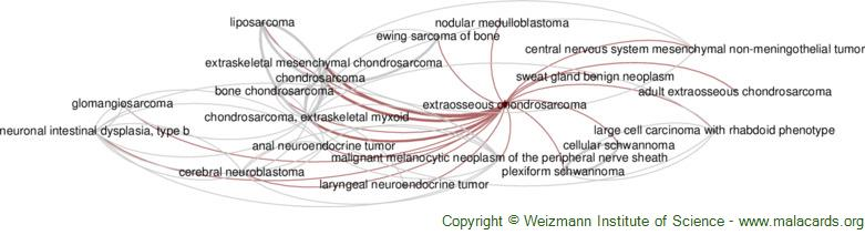 Diseases related to Extraosseous Chondrosarcoma