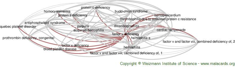 Diseases related to Factor V Deficiency
