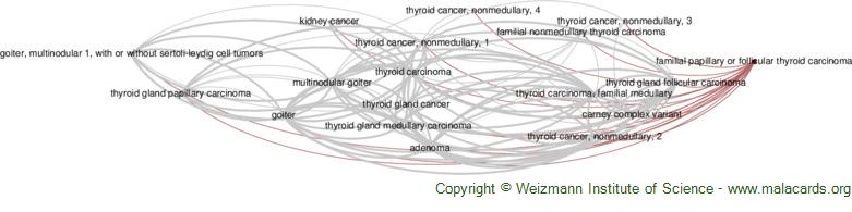 Diseases related to Familial Papillary or Follicular Thyroid Carcinoma